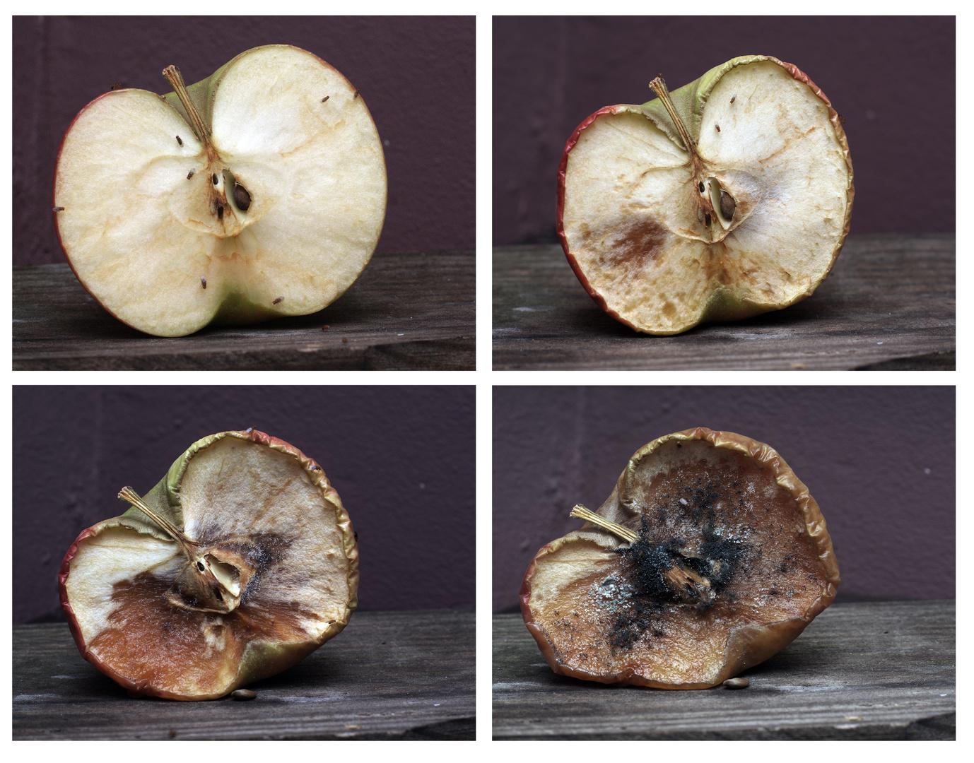 - Apfel -