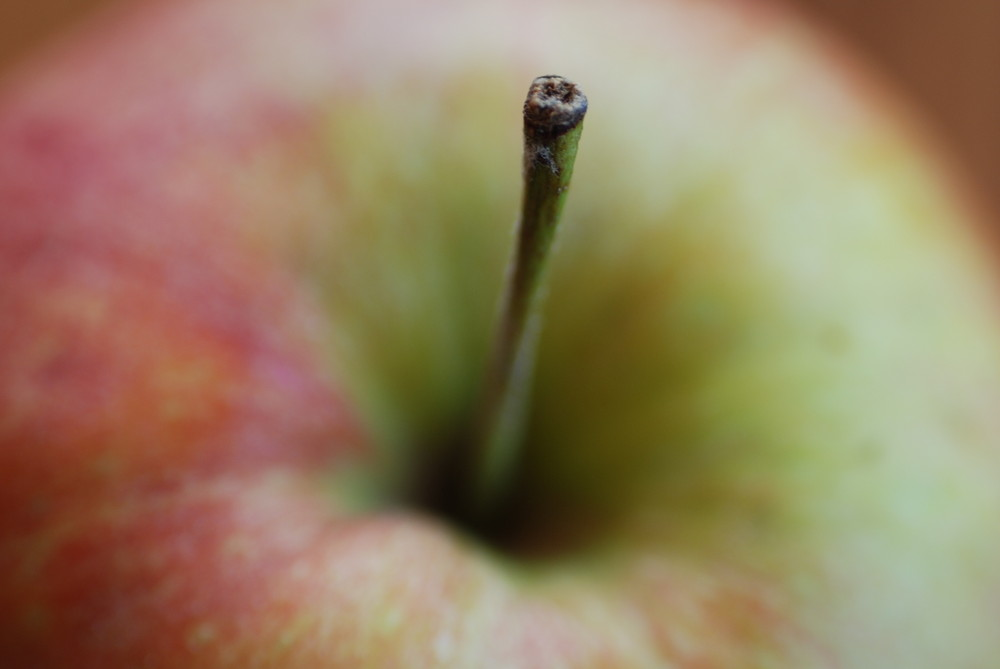 Apfel mit Stil...