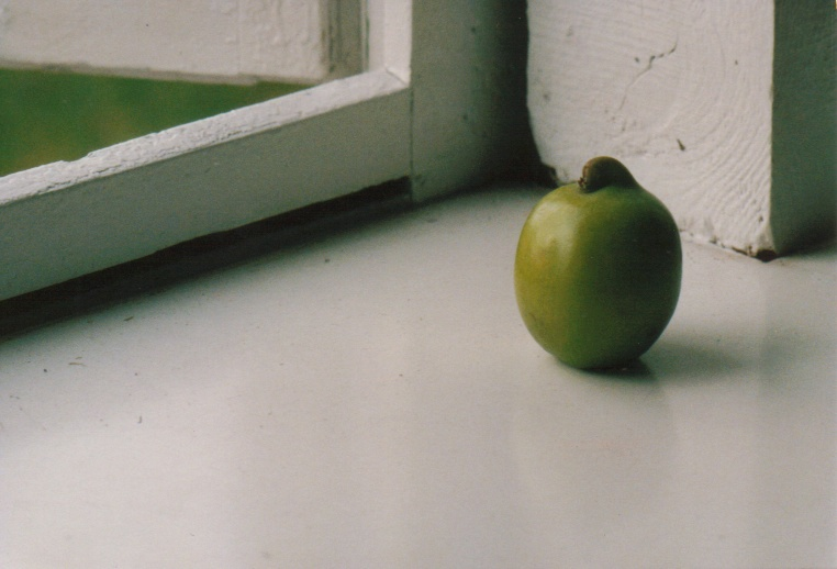 Apfel-Stilleben