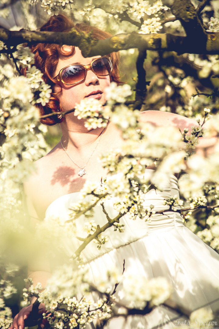 Apfelblüte - mit Tahlly