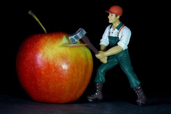ApfelmusMaker