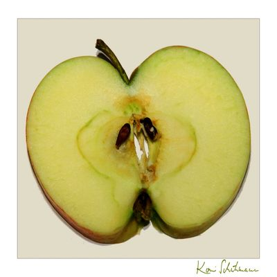 Apfelscheibe