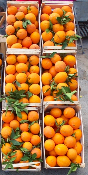 Apfelsinen am Marktstand