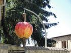 Apfelzeit in Liepe / Brandenburg