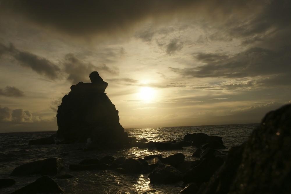 Apo Island 09'