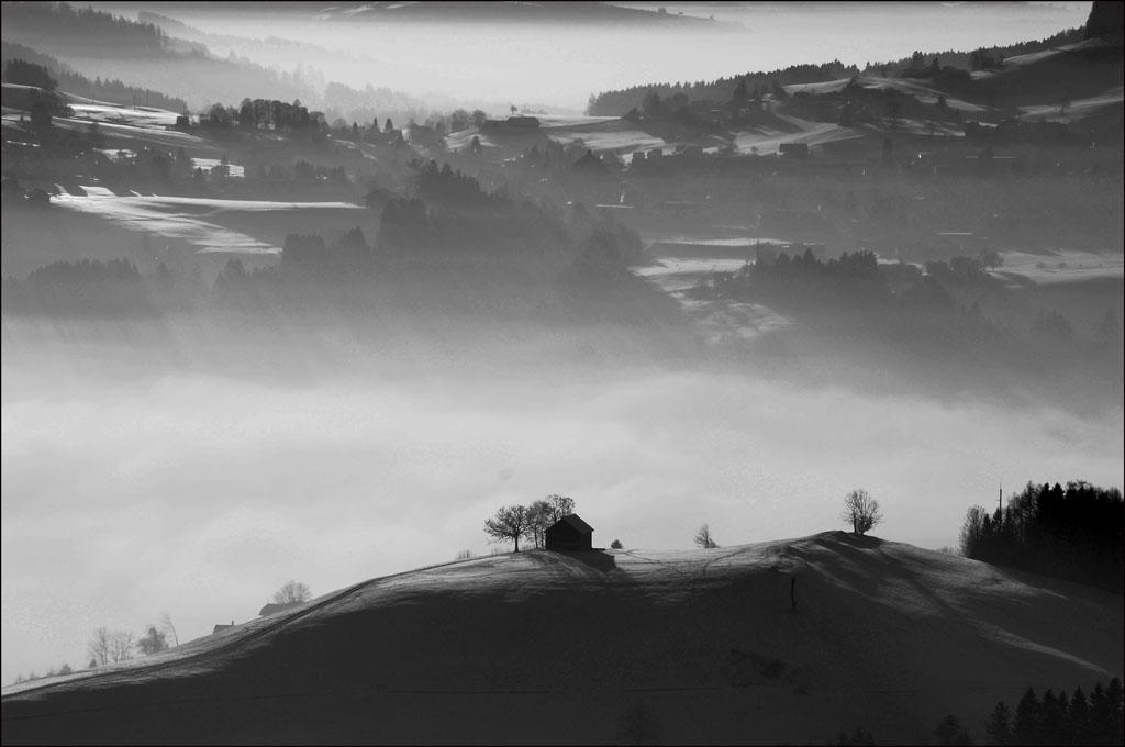 Appenzellerland im Nebel