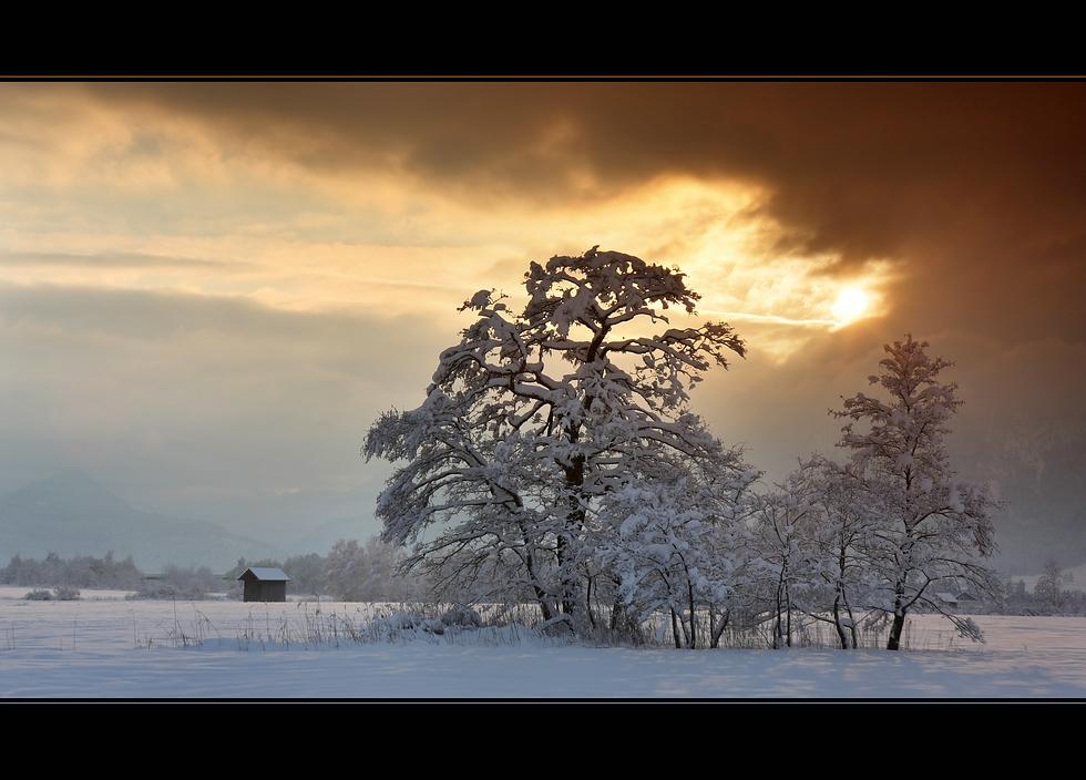 - approach of winter -