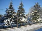 Après la neige, le soleil