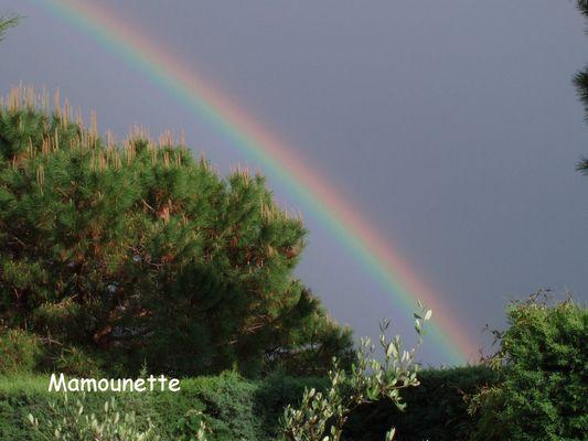 Après la pluie... l'arc en ciel...