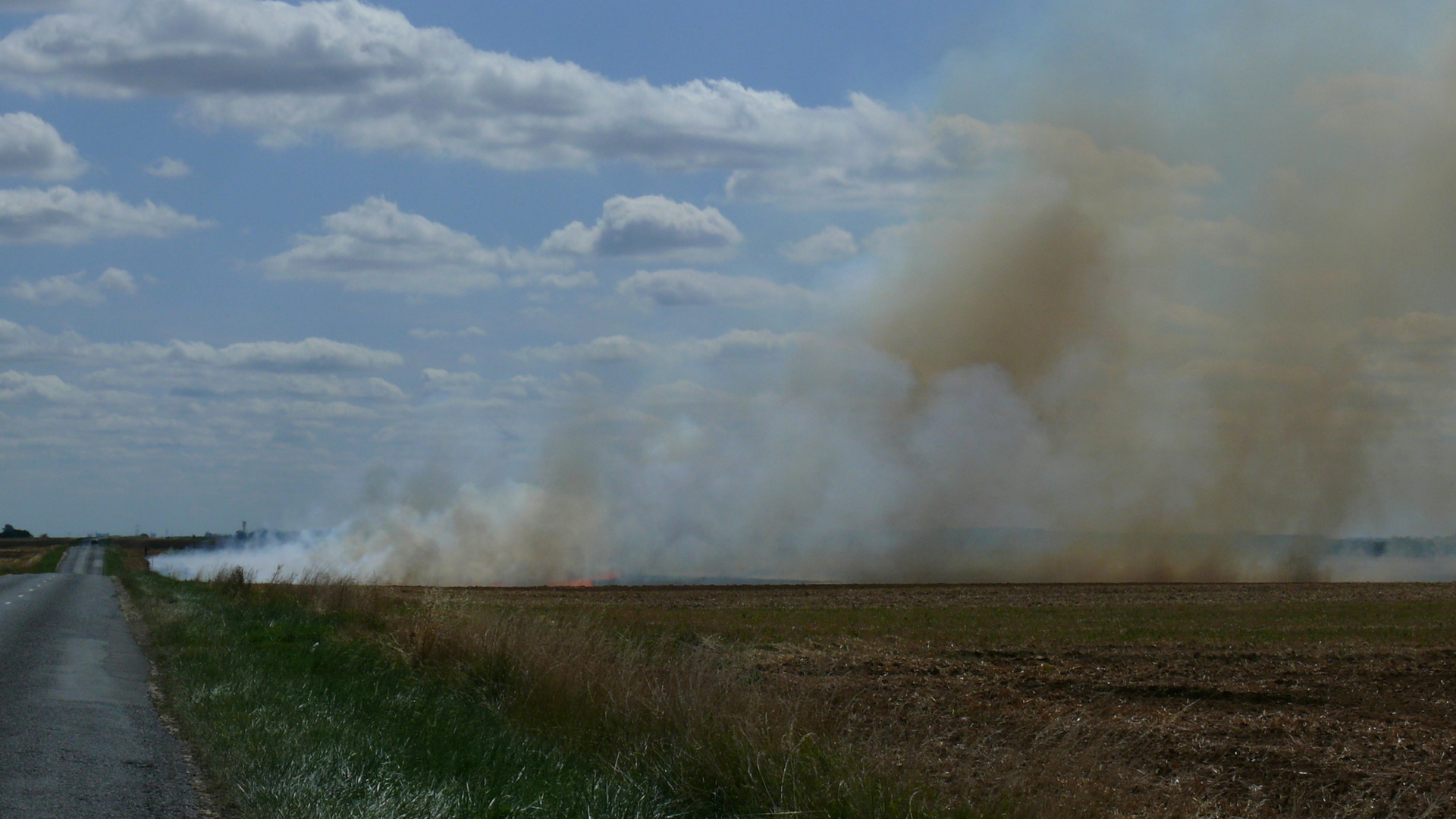 Après la récolte, le brûlage, triste paysage ...