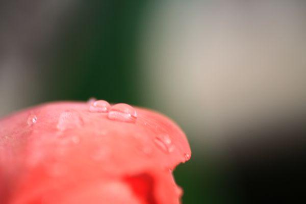 après le pluie