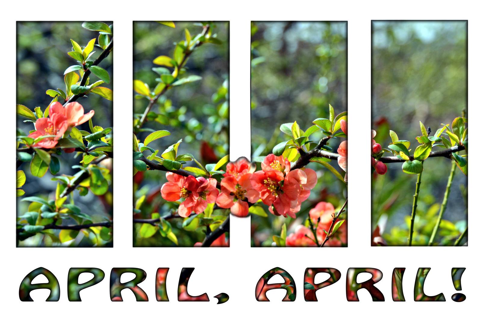 April, April der bringt mir, was ich will die Zweite