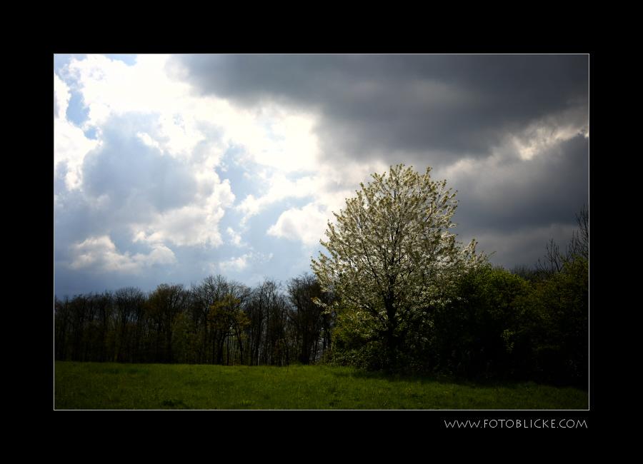 April von rechts