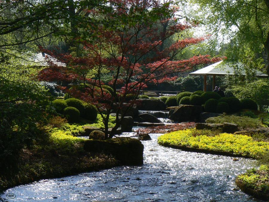 Apriltag im Japanischen Garten...(1)