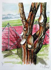 Aquarell-Baum...