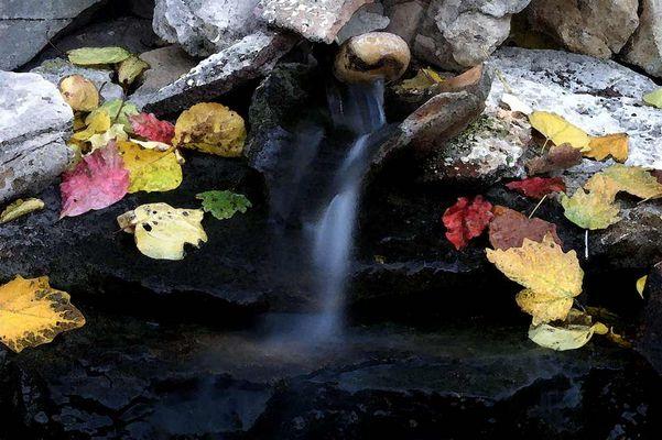 Aquarelle de feuilles d'automne