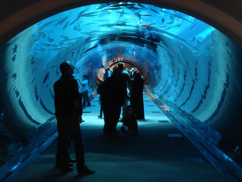 Aquarium Durchgang