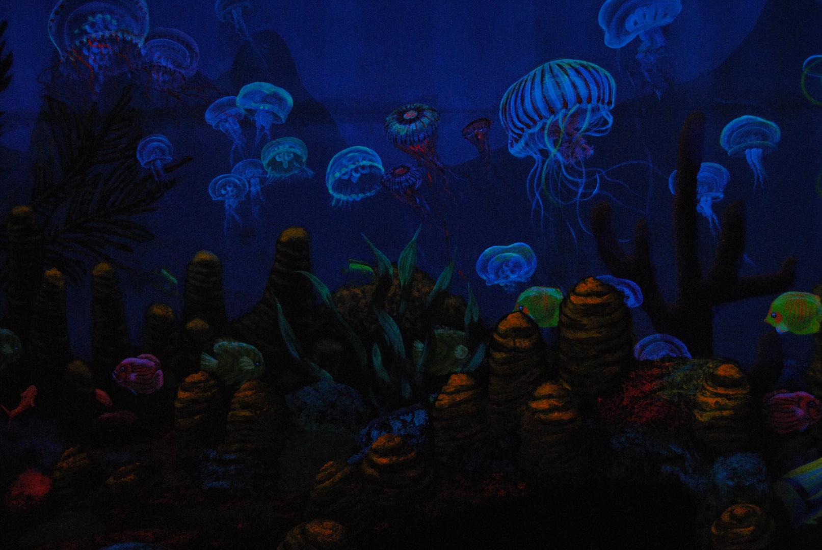 Aquarium Unterwasser Fische Lichterspiel