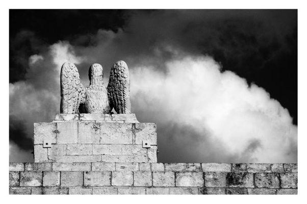Aquila del trionfo