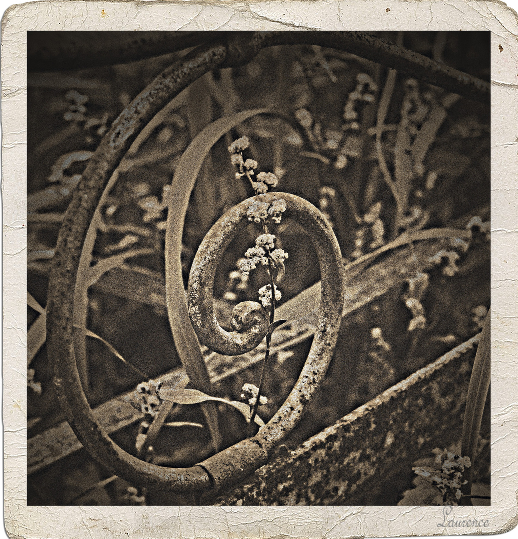 Arabesque champêtre.