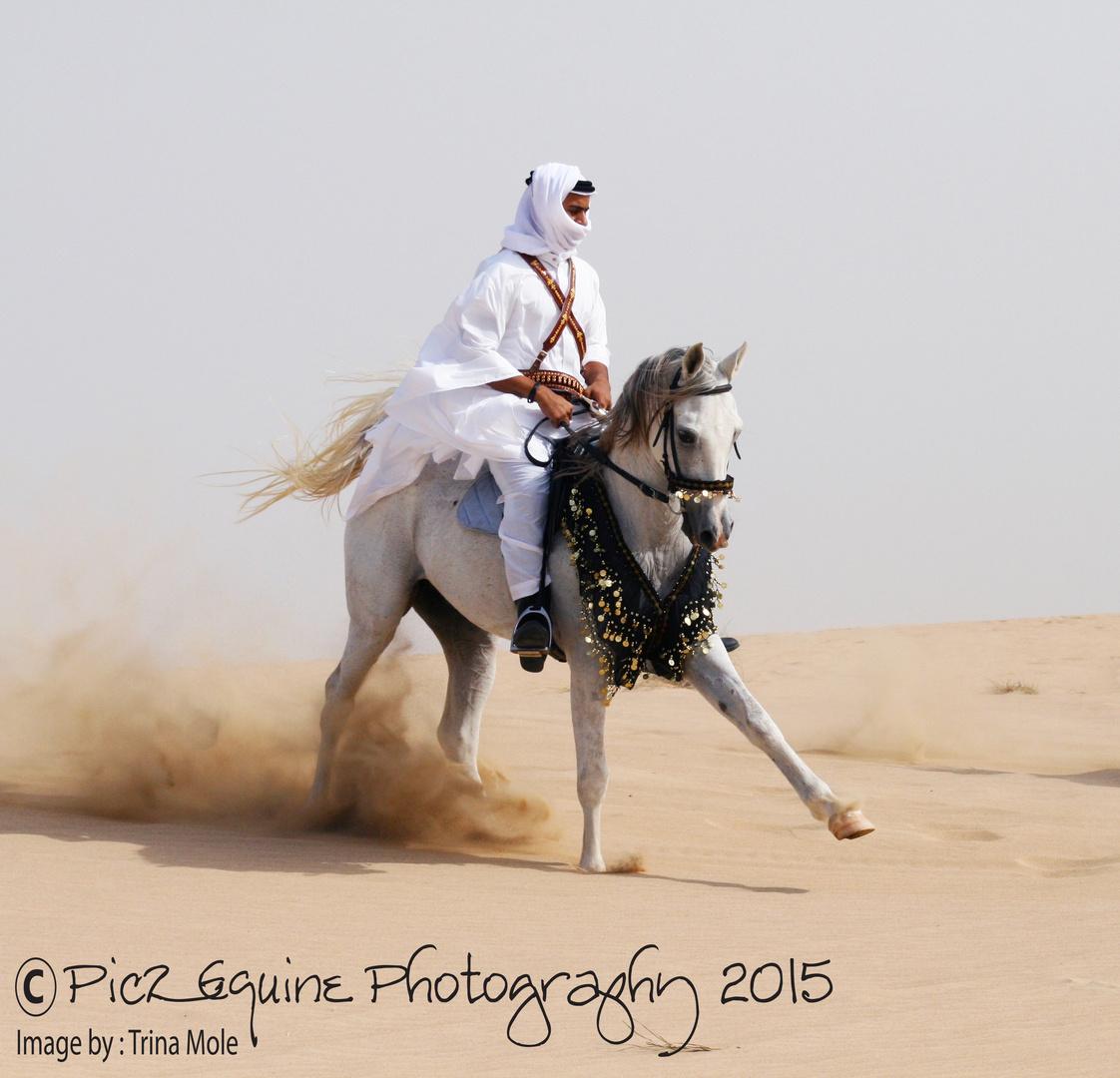 black desert how to get horse gear