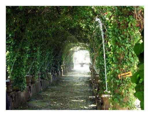 Arabische Gärten