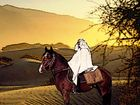 Arafat in der Wüste