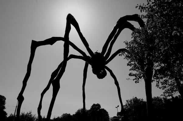 Araignée. Louise Bourgeois