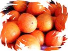 arancie siciliane