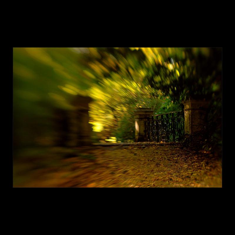 · Arboretum #2 ·