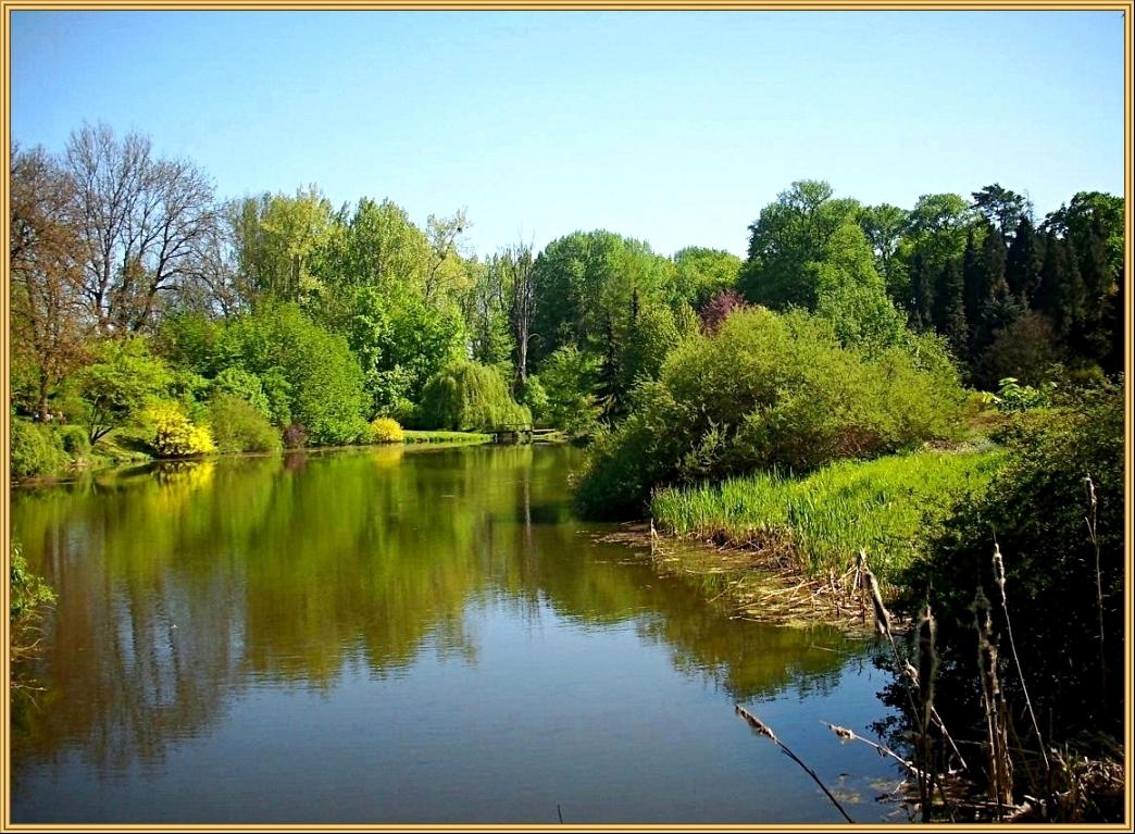 Arboretum Przelewice