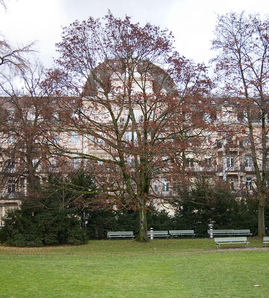 Arboretum/General-Guisain-Quai, Zürich