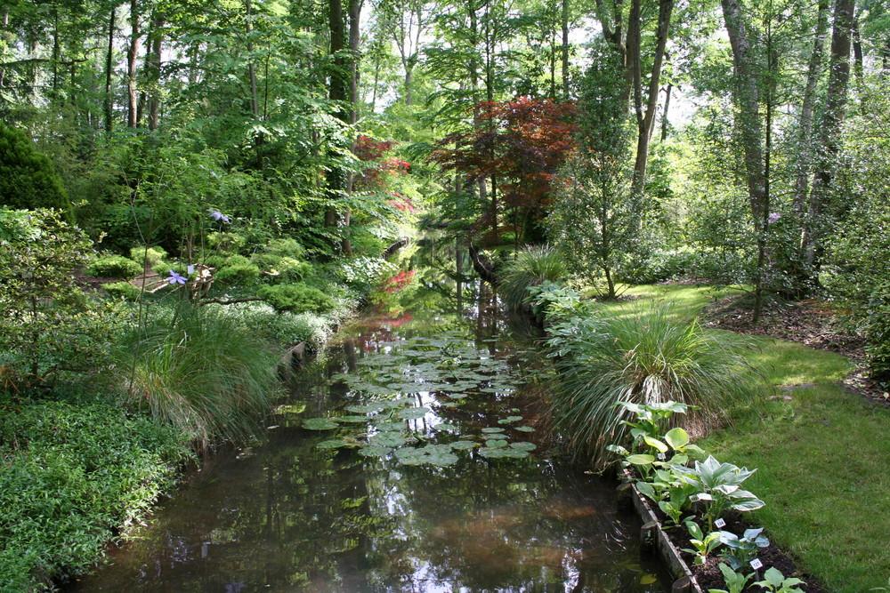 Arborium de Meung-sur-Loire 3 ( Loiret )