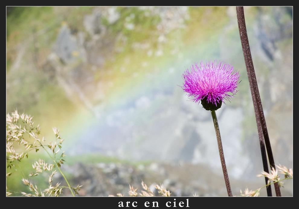 """arc en ciel - oder Regenbogen mal ganz anders ..."" von Fotograf aus München Stephan Daniel"