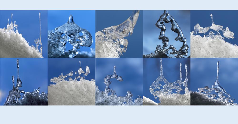 Architekt: Frost