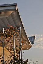 Architektur Frey Freiburg organisches Design als Ausdruck ökologischen Handelns