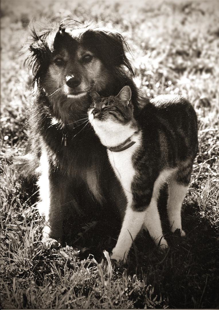 Archiv 30, Laura und Paula, Juni 1996