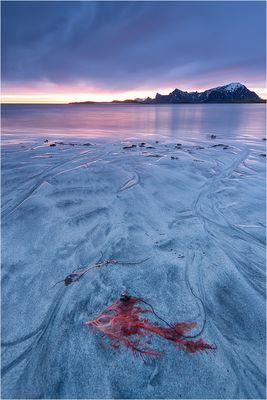 Arctic sunrise at 2:58 am