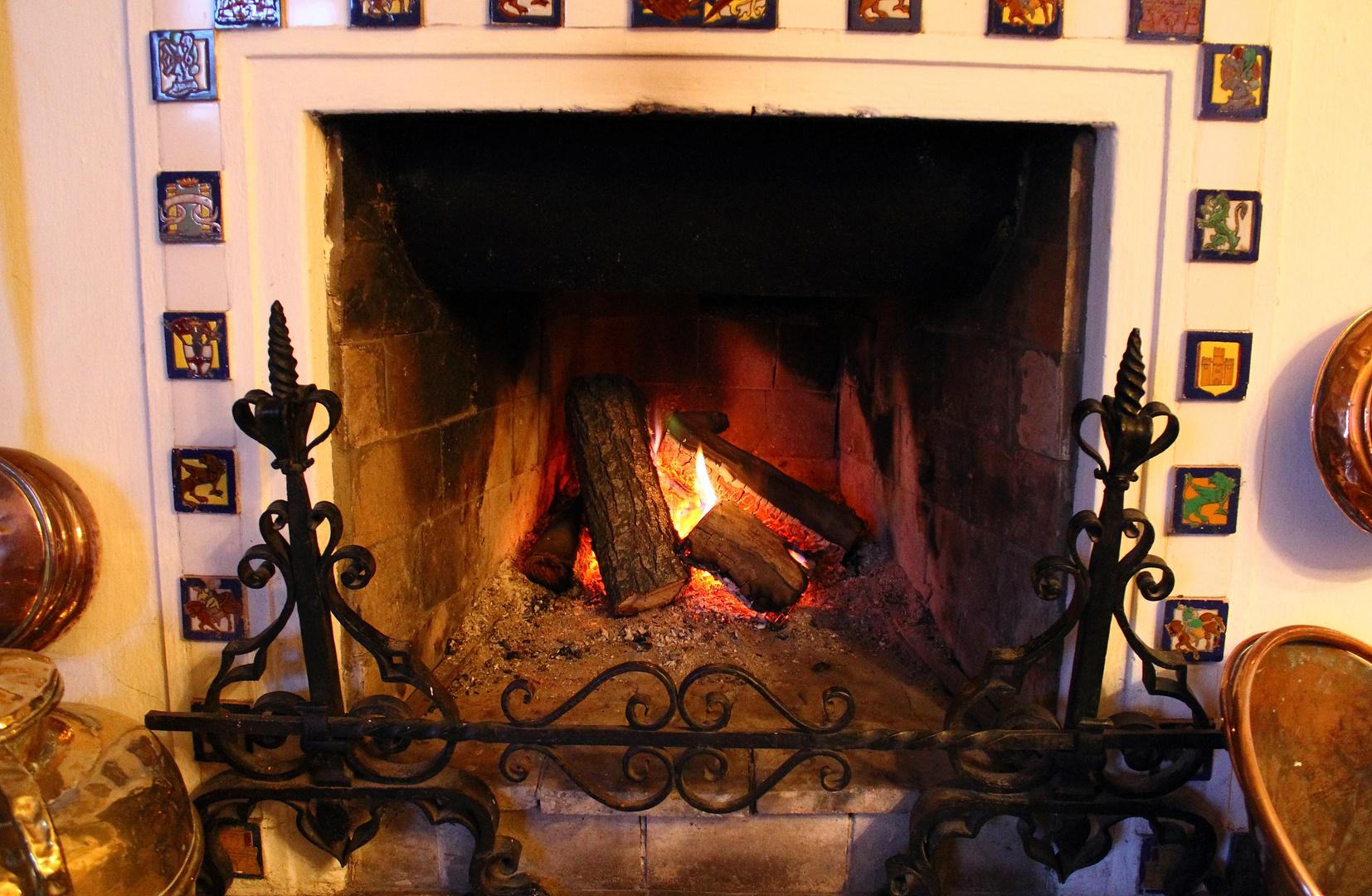 Arde la leña en mi hogar