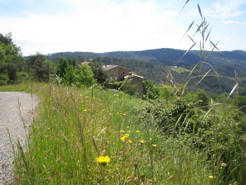 Ardeche- Südfrankreich