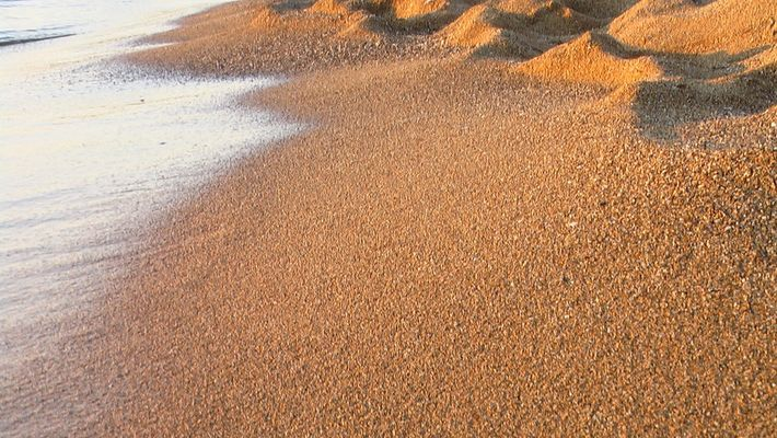 arena del playa cap cavaleria
