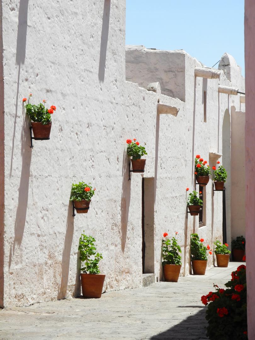 Arequipa - Kloster Sta Catalina 3