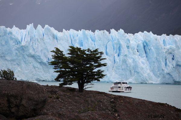 ARGENTINA  La vie malgré tout.