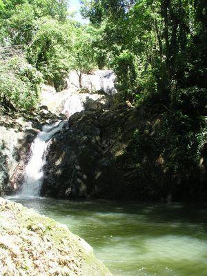 Argyle Wasserfall - Tobago