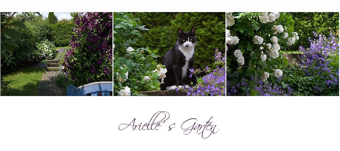 Arielle's Garten