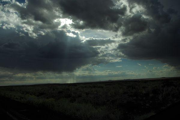 Arizona Rain