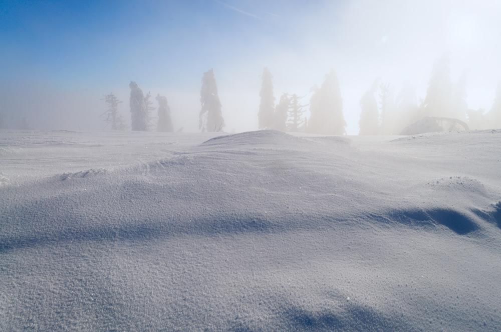 arktisch...