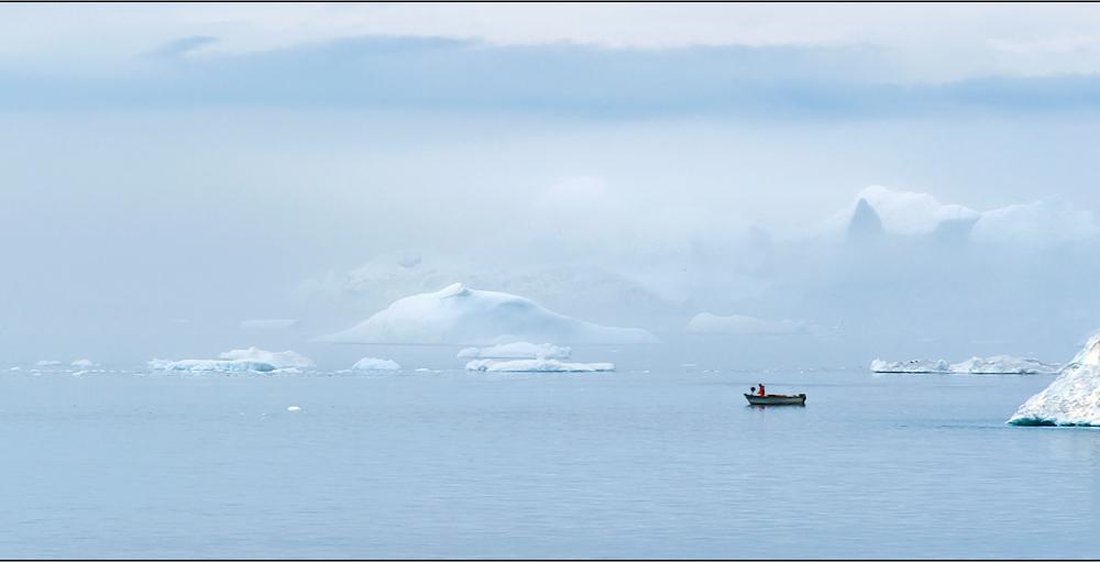 arktischer seeebel