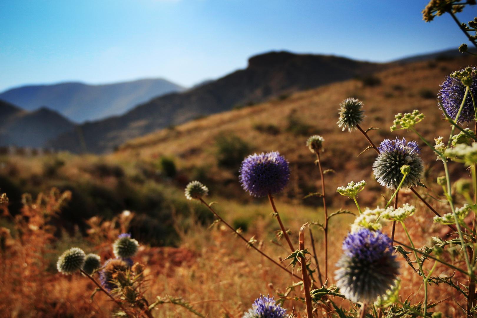 Armenien schönes Land im Kaukasus
