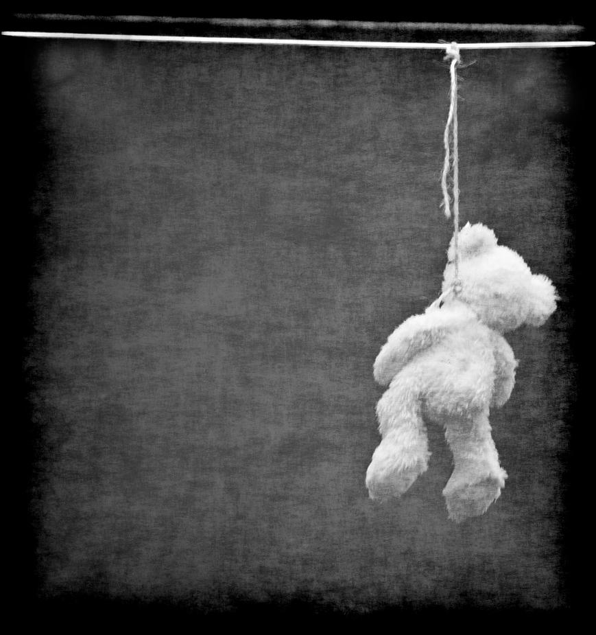 Armer Teddy...